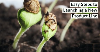 Easy Steps to Launching a New Product Line